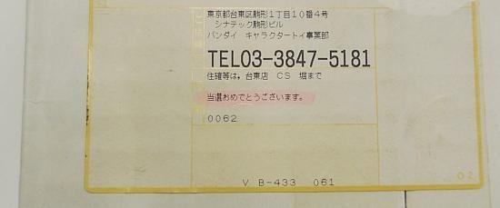 スペシャルムーンウィッグセット+イヤリング+チョーカー (13).jpg