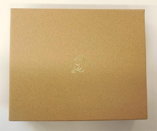 トロピカルアイスキャンディーキーホルダー (6).JPG